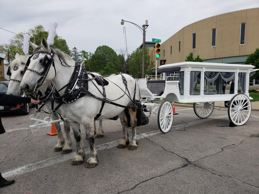 Windy Hill Equestrian Center Llc Horse Amp Carriage